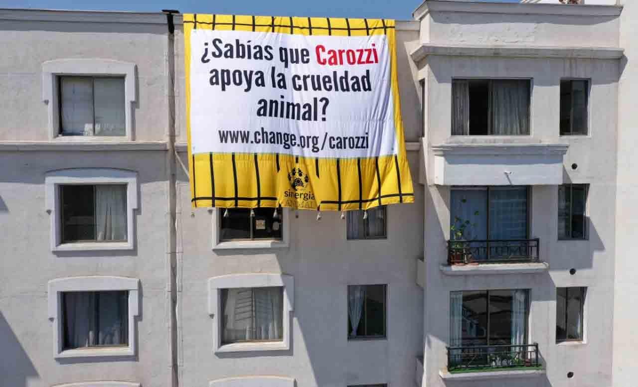 «¿Sabías que Carozzi apoya la crueldad animal?»: ONG extiende lienzo en edificios contra reconocida empresa de alimentos
