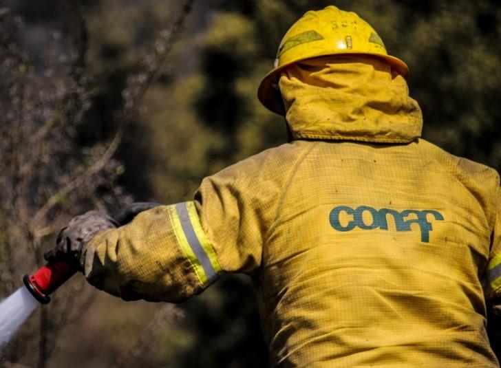 Profesionales de Conaf se oponen a reapertura de parques y reservas: Presentarían acciones legales en caso de contagios
