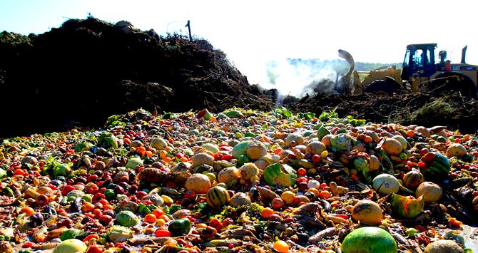 Parlamento de Catalunya aprueba ley para enfrentar el despilfarro alimentario
