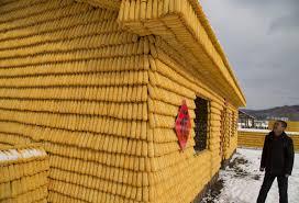 Debate: Proponen incorporar el maíz procesado como material de construcción paras las viviendas