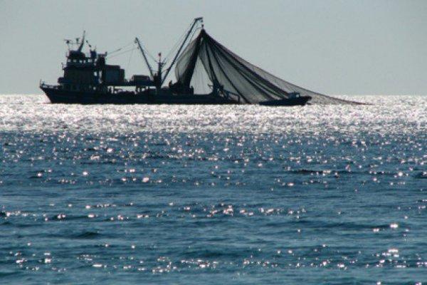 Trabajadores pesqueros presentan recurso para invalidar dictamen DT que autoriza a no pagarles sueldos