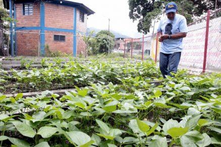 Congreso: Comisión de Pesca rechazó proyecto que crea nuevo Ministerio de Agricultura