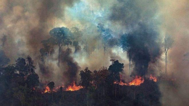 Un algoritmo predice la dificultad para combatir incendios forestales