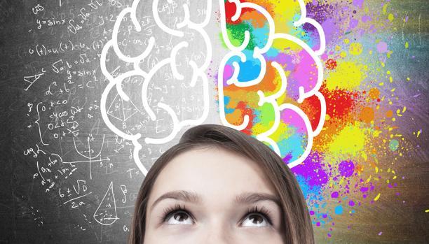¿Cómo el ambiente familiar afecta el desarrollo del cerebro adolescente?