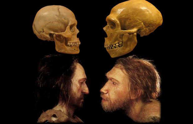 Supercomputadora logra simular la extinción de los neandertales