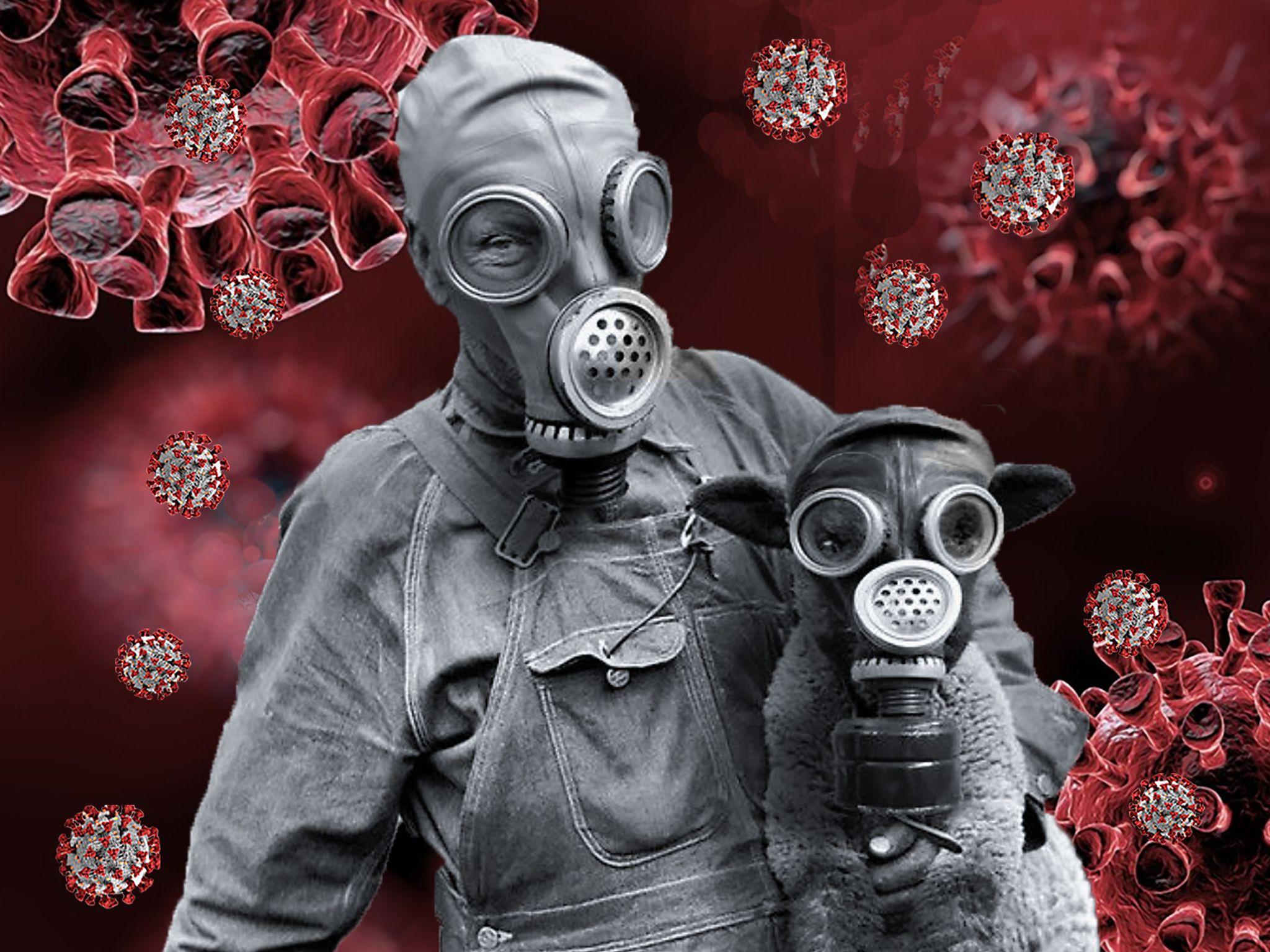 Estudio revela  que el trauma por la pandemia nos hará mejores personas