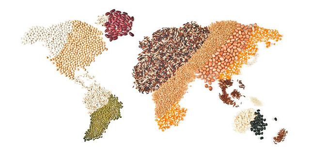 Revelan cómo se propagó el cultivo de arroz en Asia