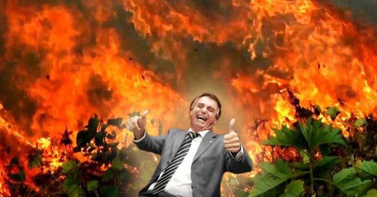 Mientras el mundo se concentra en la pandemia, Bolsonaro y sus amigos saquean la Amazonía