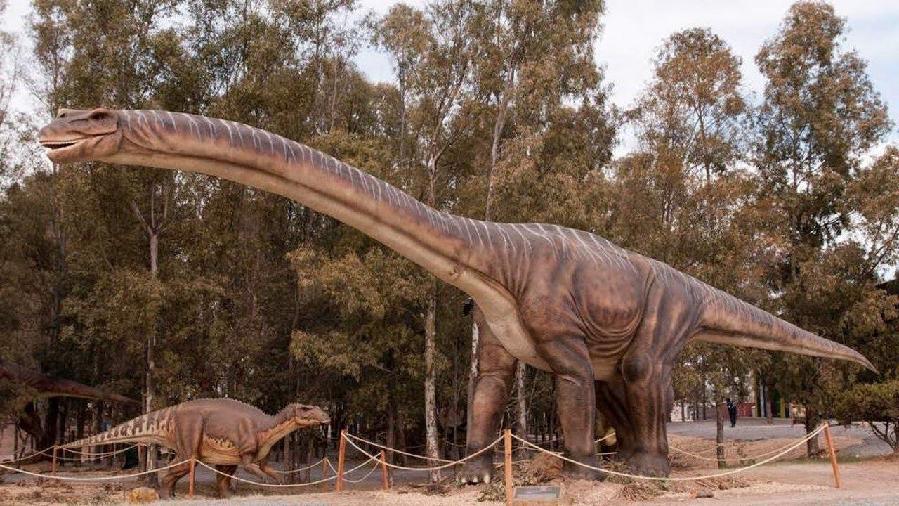 ¿Cuál fue el dinosaurio más grande que habitó la Tierra?