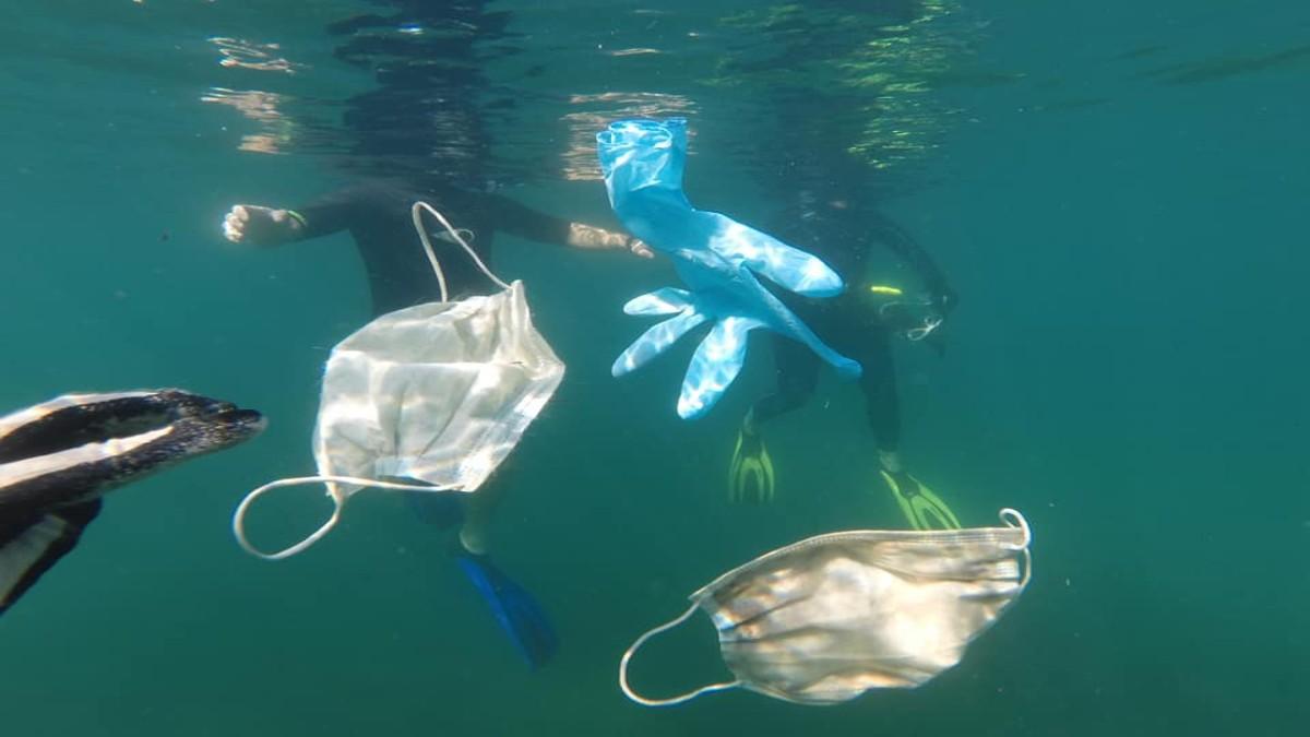 Siete documentales para ampliar tu conciencia ambiental