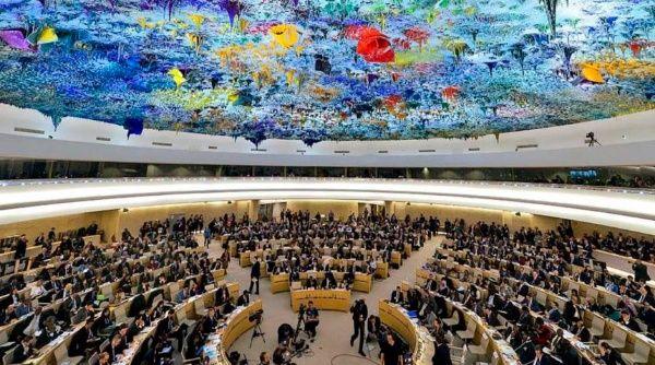 Consejo de DD. HH. de la ONU debatirá este miércoles racismo sistemático en EE. UU.