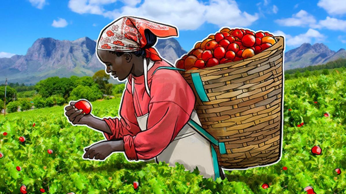 ¿Cómo se vincula el sector agrícola con la tecnología Blockchain en latinoamérica?