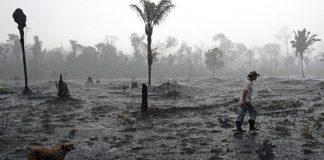Sunchuluminaria, retrato de la incoherencia ecologista boliviana
