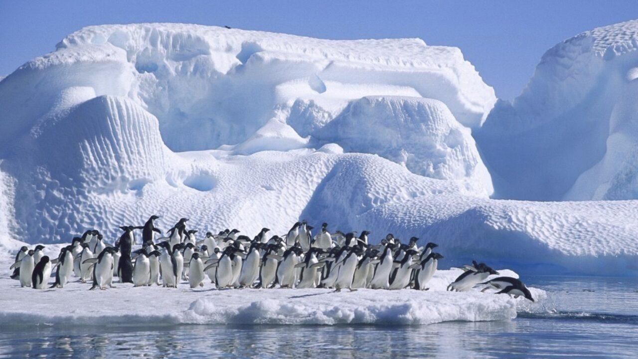 El calentamiento en el Polo Sur es tres veces más rápido que en el resto del mundo