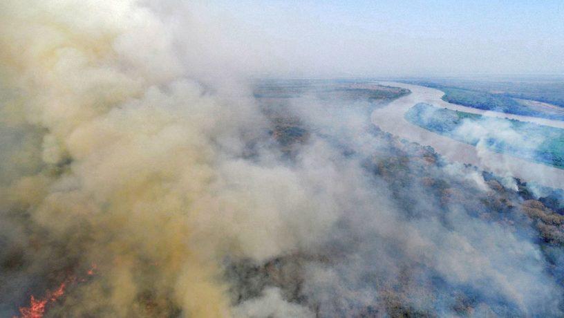 El  Pantanal de Brasil está en peligro: Los incendios aumentaron 200 % en comparación con 2019