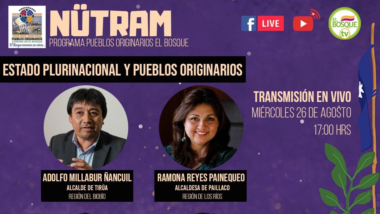 El Bosque organiza conversatorio virtual sobre representación política del Pueblo Mapuche