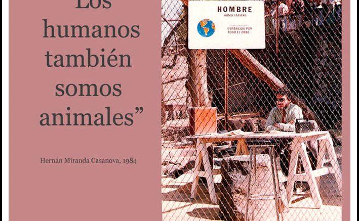 """""""A nadie daré una droga mortal"""": Nano Stern encabeza homenaje a poeta chileno que una vez estuvo en el zoológico"""