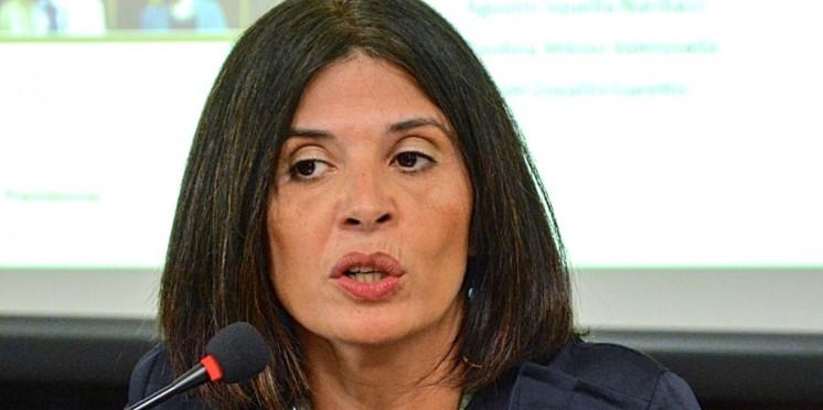 PNUD considera que plebiscito en Chile será un encuentro seguro y participativo