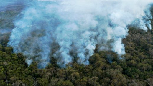 (Fotos) Incendios forestales en el Pantanal causan graves estragos ecológicos