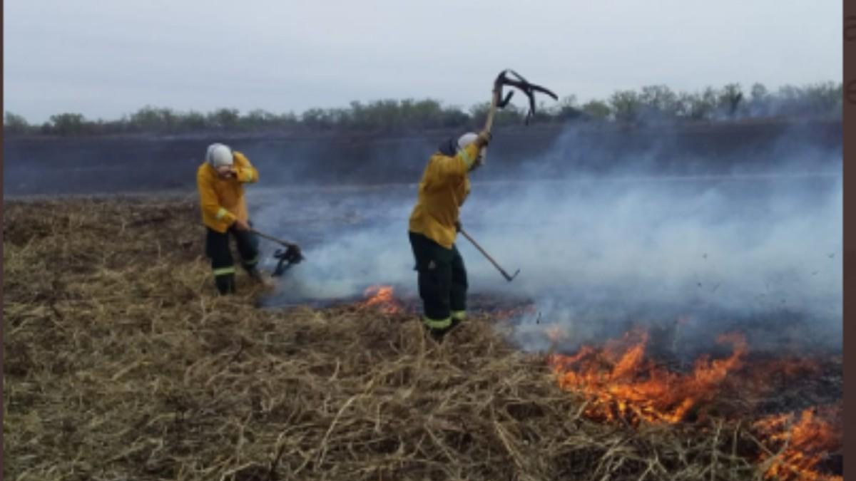 (Video y fotos) Se extienden incendios forestales en Argentina