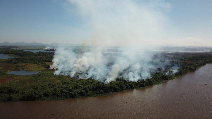 Detectan más de 1.600 focos de incendios en el Pantanal de Brasil, uno de los mayores humedales del planeta