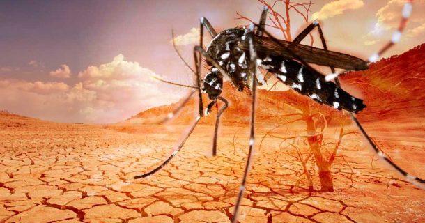 Calentamiento global y enfermedades infecciosas: dos de las mayores amenazas para la humanidad