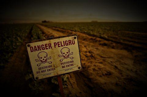 Pesticidas, el turbio negocio europeo: 1,4 M de intoxicados en Brasil por comprar veneno prohibido en primer mundo