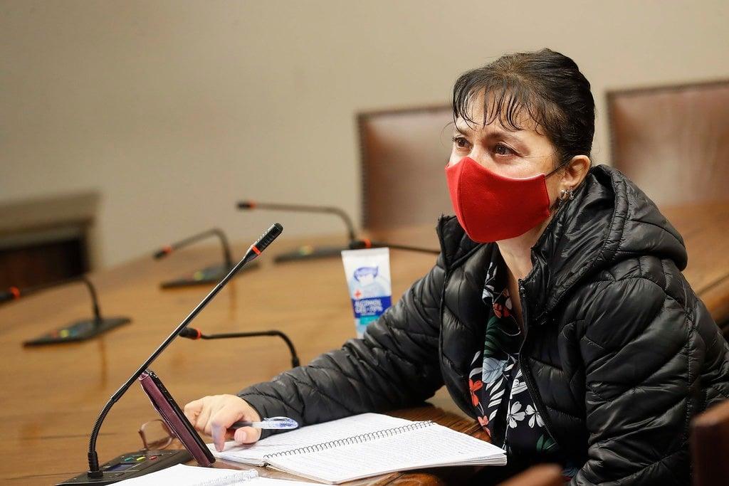 Diputada Marzán por apelación del SEA contra fallo que favorecía a Putaendo: «Es lamentable que este servicio olvide su rol garante»