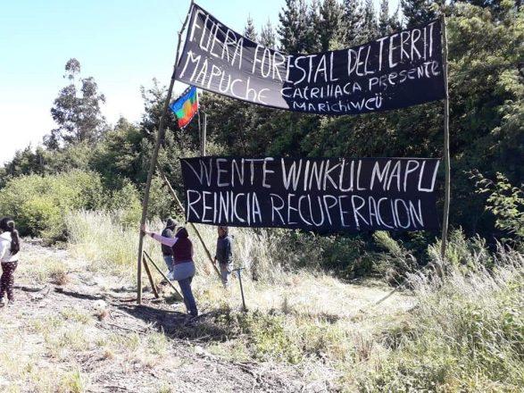 Werken Luis Melinao: «La tarea que tenemos como comunidad es recuperar el territorio»