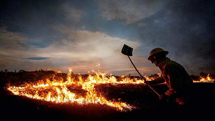 Incendios han arrasado 23 % del área del Pantanal brasileño y el fuego continúa