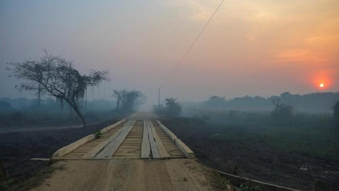 Declaran situación de emergencia en estado brasileño por incendios del Pantanal