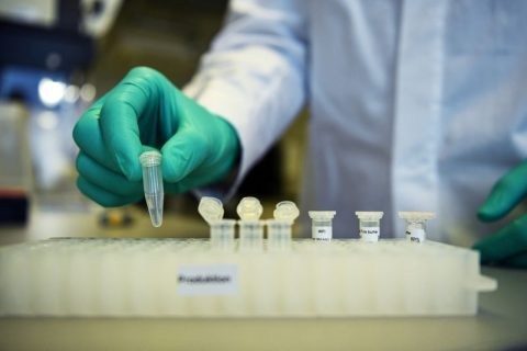 CureVac asegura positivos datos preclínicos para su vacuna potencial contra el COVID-19