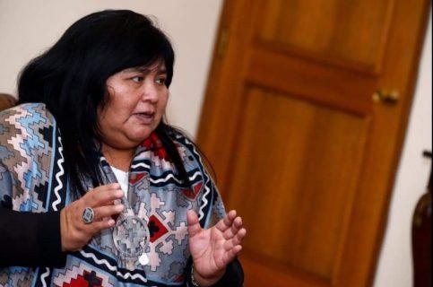 Pueblos Originarios: Diputada Nuyado acusa