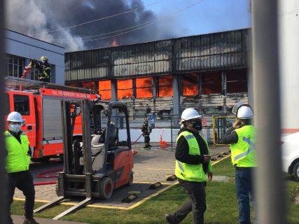 Talcahuano: Seremi de Salud anuncia sumario sanitario a empresa Camanchaca tras incendio