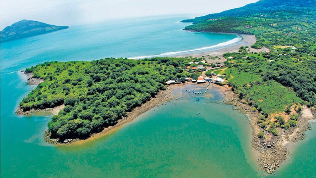 Nicaragua dispuesta a convertirse en una referencia forestal