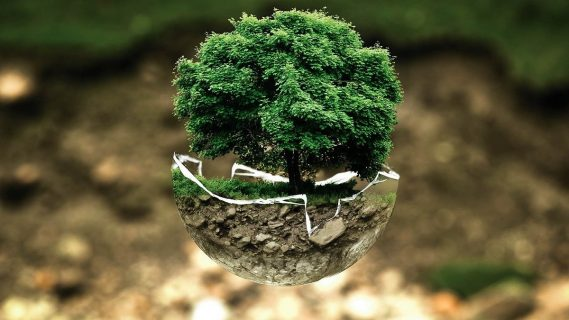 España: Claves para una transición ecológica