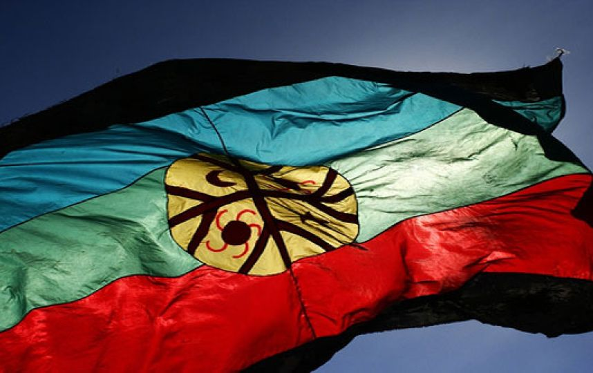 Comunidades mapuche de Bajo Bío Bío en situación crítica denuncian que desde Conadi se les niega ayuda
