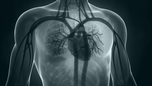 COVID-19 es capaz de aliviar el dolor mientras se propaga dañando sistemas y órganos