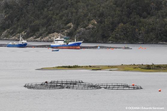 Pescadores artesanales rechazan proyecto Dominga