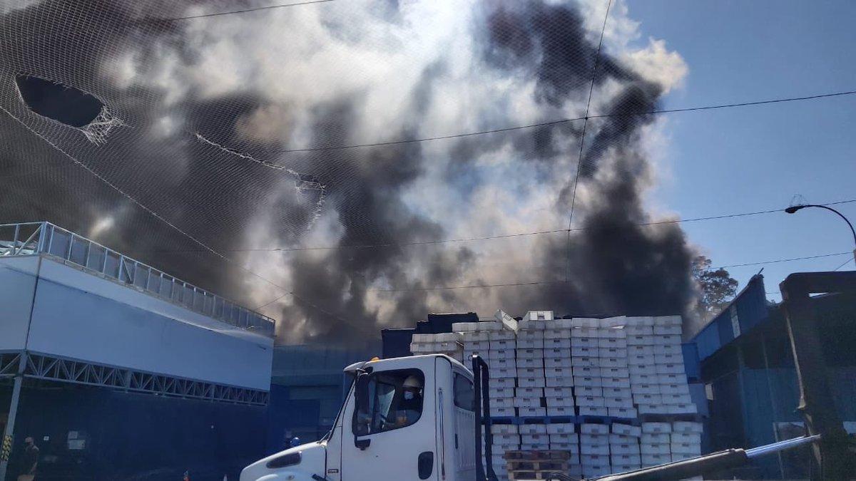 Incendio de pesquera Camanchaca en Talcahuano: Municipio llama a evitar toxicidad del aire mientras empresa descarta liberación de gases