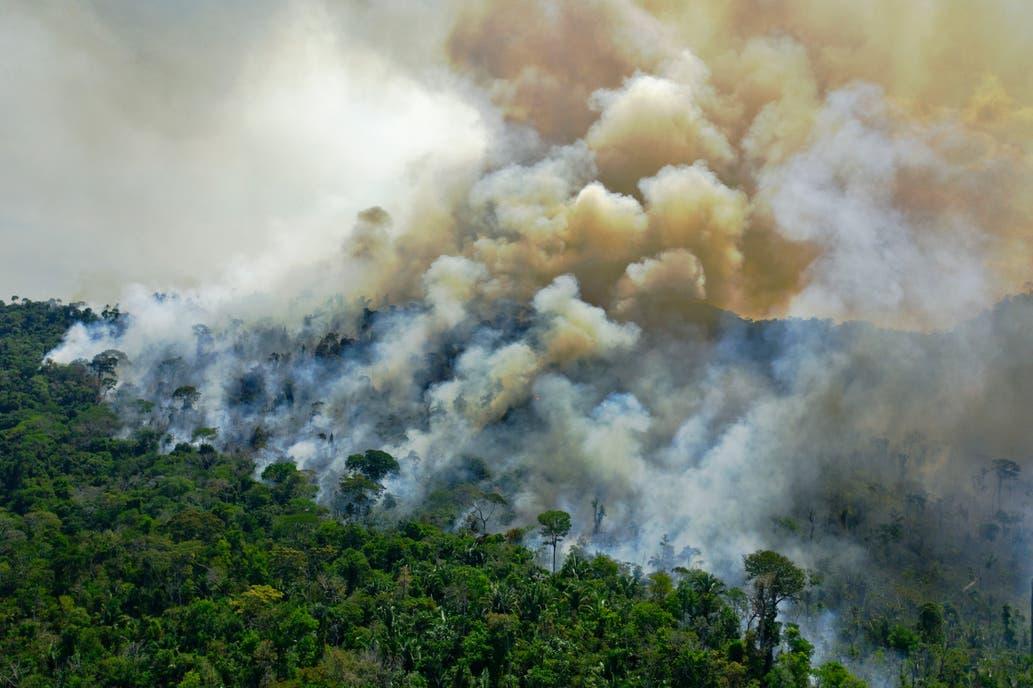 Brasil: suspenden combate de incendios en todo el país por falta de recursos económicos
