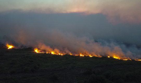 Incendios en la Amazonía y el Pantanal brasileño no cesan