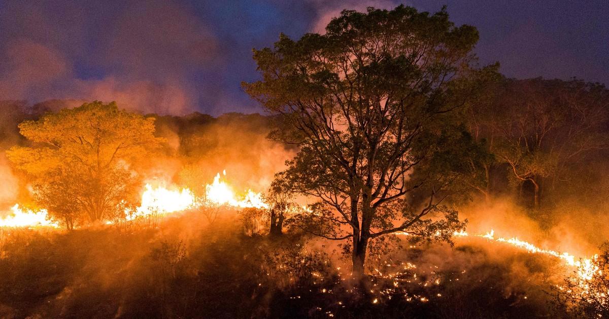 Brasil: despliegan Fuerza Nacional para combatir incendios en el Pantanal