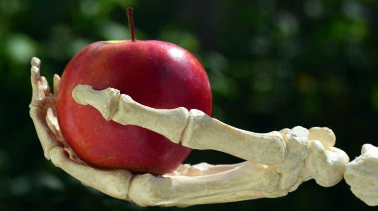 Crean un biomaterial que permitiría restaurar tejido óseo y ayudar a personas con osteoporosis