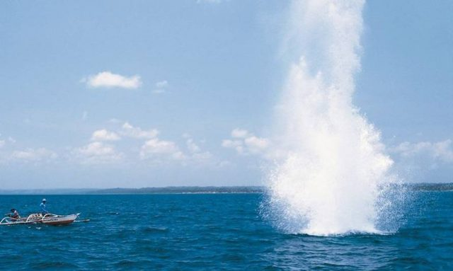 Cámara de Diputados aprobó proyecto que aumenta penas y sanciones por usar explosivos en labores de pesca