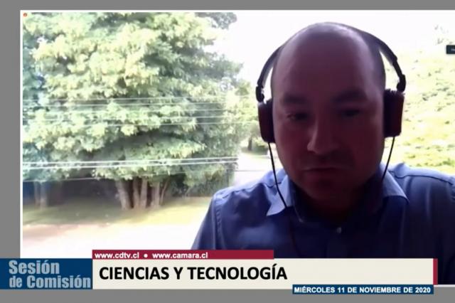 Científico chileno expuso sobre terapia contra el Covid-19 creada con anticuerpos de las alpacas