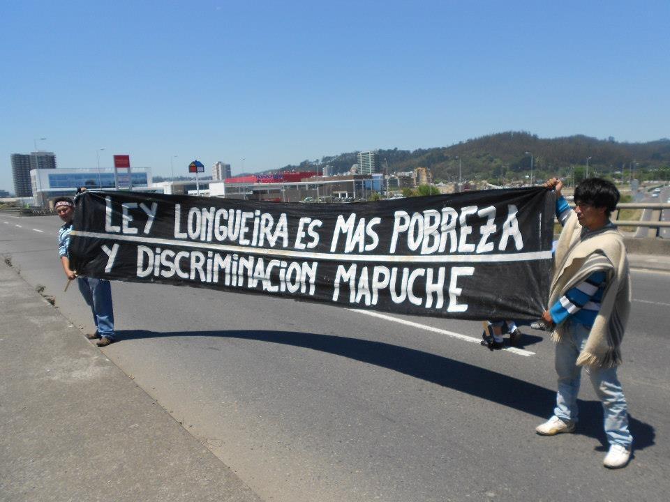 "Comunidades Mapuche Lafkenche valoraron anulación parcial de la ""Ley Longueira"""