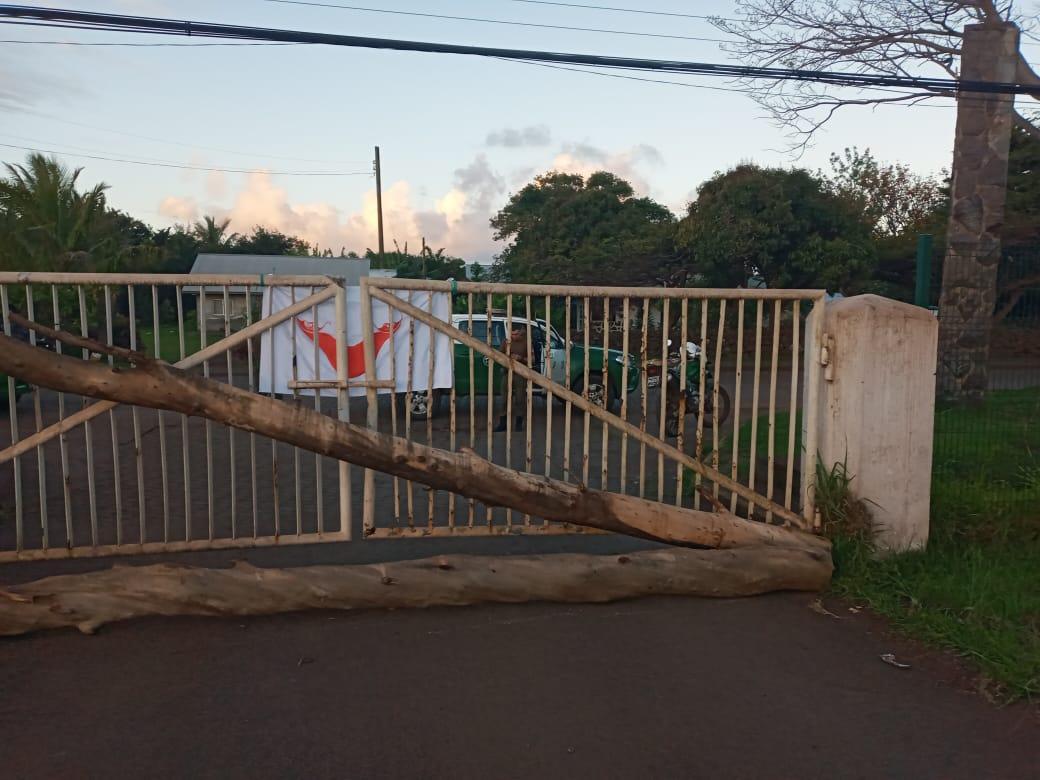 URGENTE: Clan Roe clausura aeropuerto de Rapa Nui en protesta por nula respuesta del Estado a su histórica demanda de restitución territorial