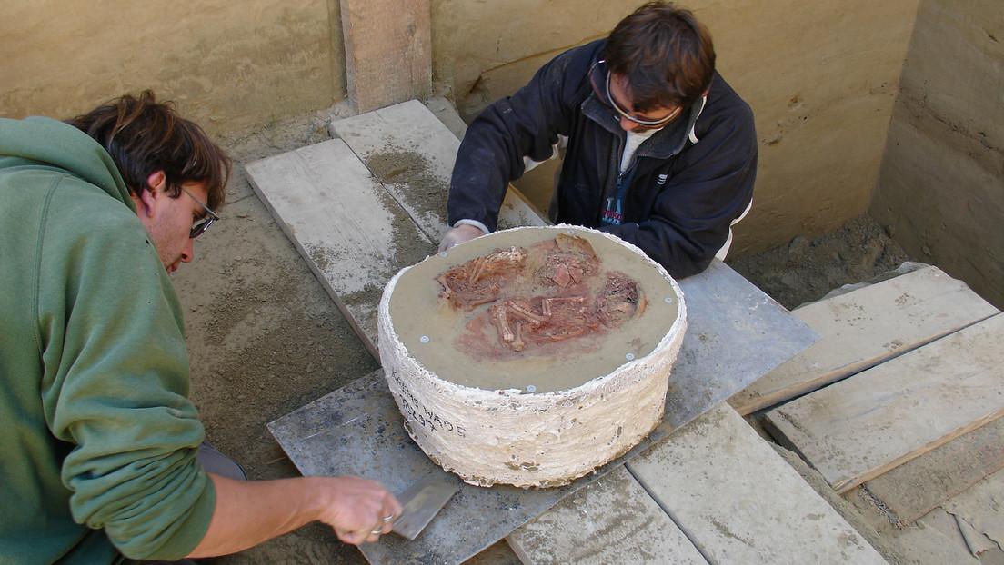 «Refleja un episodio doloroso»: identifican el entierro de gemelos más antiguo del mundo