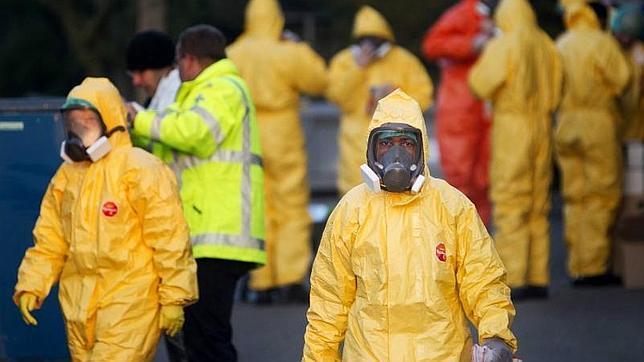gripe aviar brotes alemania países bajos